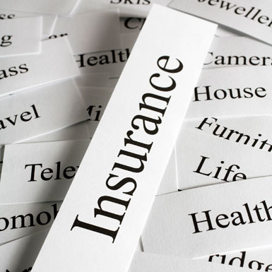 license insurance